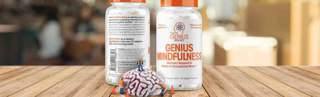 Genius Mindfulness Review